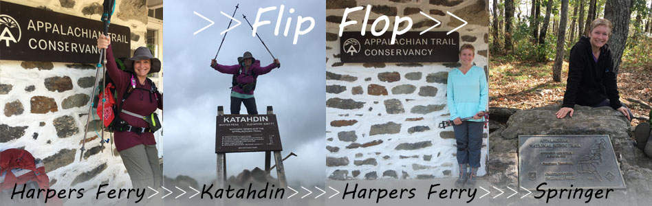 flip-flop-header.jpg